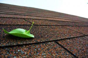 Устройство холодной крыши из мягкой черепицы